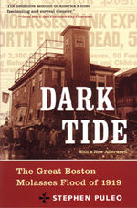 Book Cover for Dark Tide, links to Beacon Press page for book