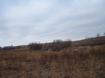 Image of Stone Prairie Farm from February 13, 2009