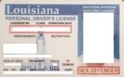 LA_driverslicense