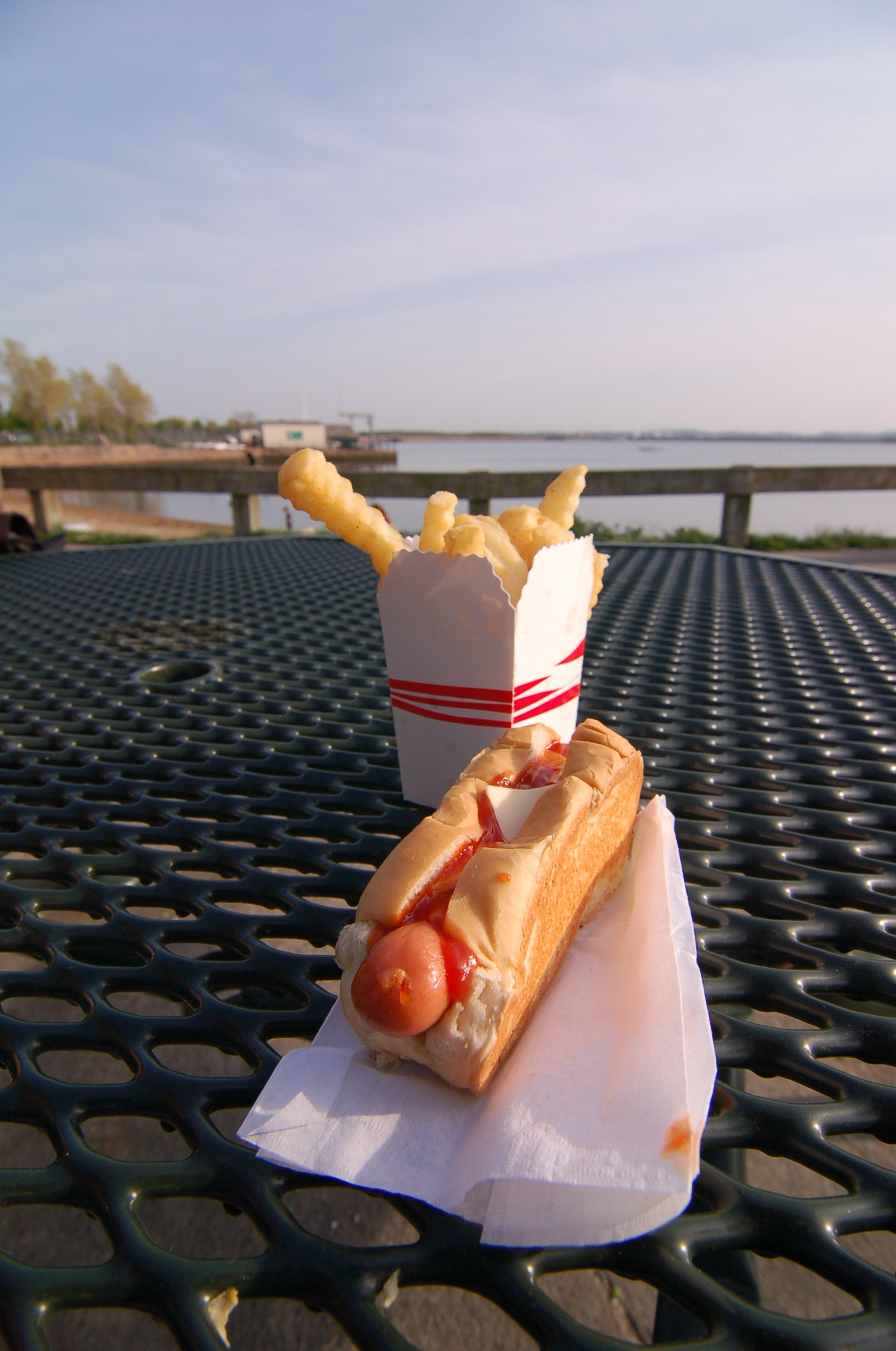 Hot Dog From Sullivan's, Castle Island, by Rob Bellinger