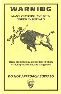Buffalo warning in Yellowstone National Park