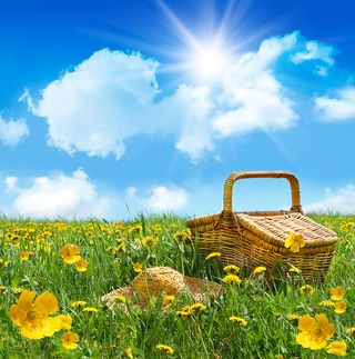 Bigstock-Summer-Picnic-Basket-With-Stra-4855395