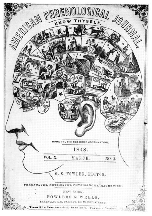 Phrenology_Wikipedia