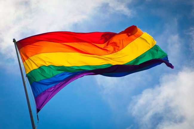 Rainbow flag (via Wikimedia Commons)