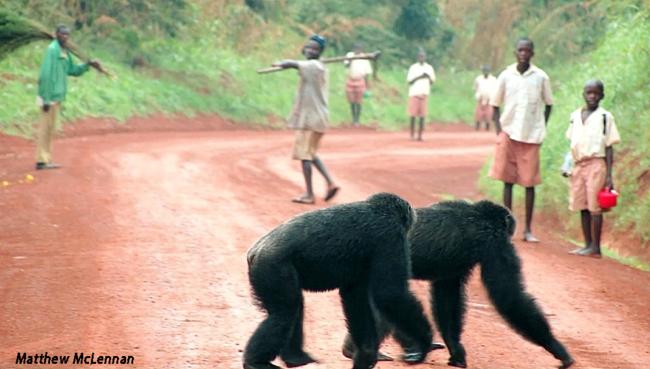 Sylvester and Keeta crossing the main road in Bulindi, Uganda