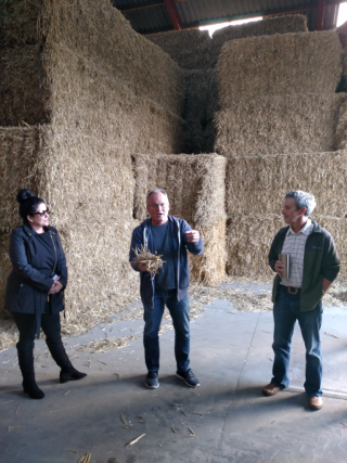 Søren Hermansen shows American visitors straw – the feedstock for Samsø's Ballen-Brundby district heating plant.