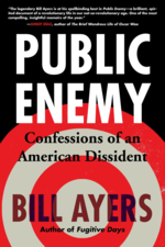 AYERS-PublicEnemy-paperback