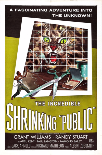 The Incredible Shrinking Public