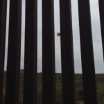 The Implication of a Fence: Part Two - Eye to Eye