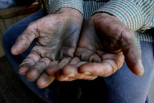 The hands of Benito Parra, an olive worker, show the dirt and grime of a day picking olives. Photo by David Bacon.